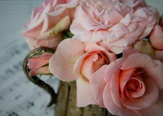 Roses Silver Vintage Creamer