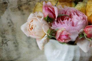 Roses White Creamer